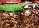 Маринованные шампиньоны на зиму видео рецепт – Маринованные грибы на зиму. Рецепты маринования опят, маслят, шампиньонов, лисичек, белых грибов
