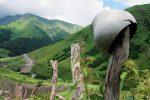 Осетины фото – Вот такая она – Южная Осетия (много фото) / блог сообщества Южная Осетия / smotra.ru