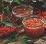 Рябина с медом – Красноплодная рябина с медом – простой и полезный рецепт как сделать медовую заготовку из рябины. » Сусеки