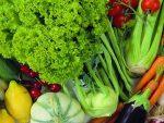 Овощи на пару рецепты с фото – Как готовить овощи на пару 🚩 какие овощи готовят на пару 🚩 Кулинарные рецепты
