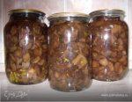 Свинушки маринованные рецепт – Бабушкины маринованные свинухи домашний рецепт с фотографиями пошагово готовим